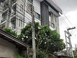 Hiso Resident - Apartments for Rent in U.S. Consulate General Chiang mai U.S. Consulate General Chiang mai
